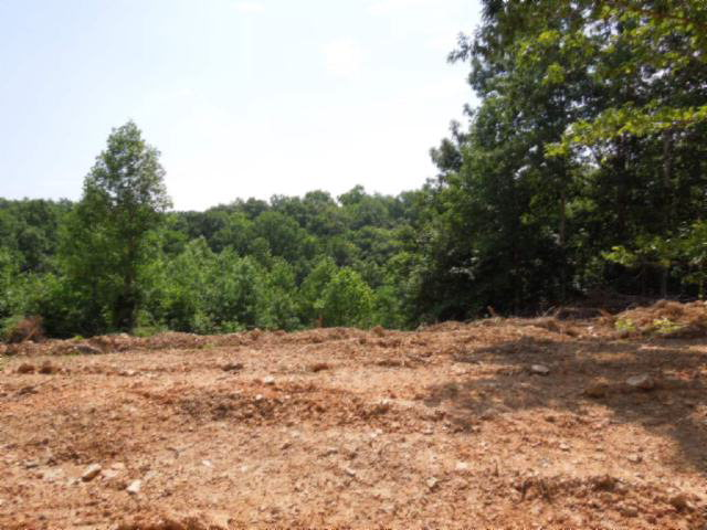 Real Estate for Sale, ListingId: 23998660, Gainesboro,TN38562