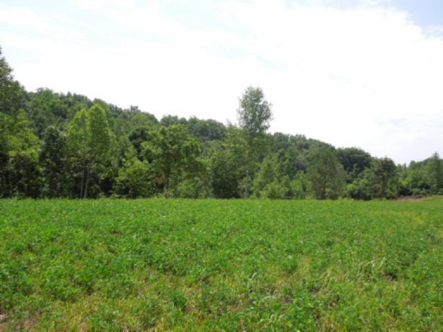 Real Estate for Sale, ListingId: 23998662, Gainesboro,TN38562