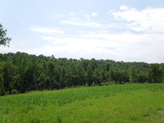 Real Estate for Sale, ListingId: 23998663, Gainesboro,TN38562