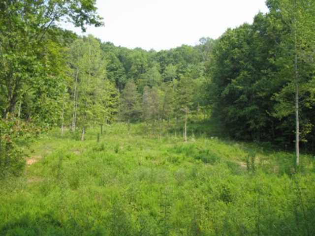 Real Estate for Sale, ListingId: 24653128, Allons, TN  38541