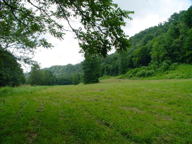 Real Estate for Sale, ListingId: 24653127, Pall Mall, TN  38577