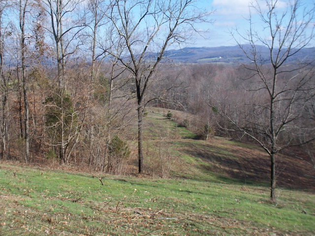 Real Estate for Sale, ListingId: 24984500, Byrdstown,TN38549