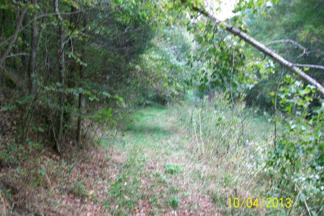 Real Estate for Sale, ListingId: 25463289, Gainesboro,TN38562