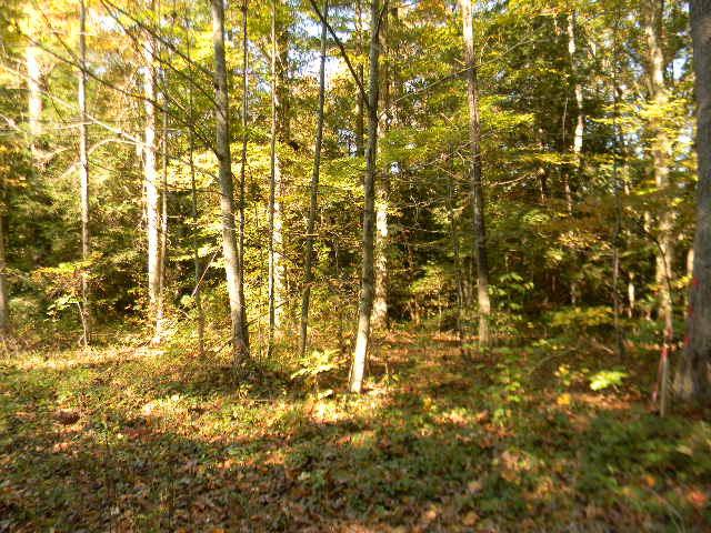 Real Estate for Sale, ListingId: 25774861, Jamestown,TN38556