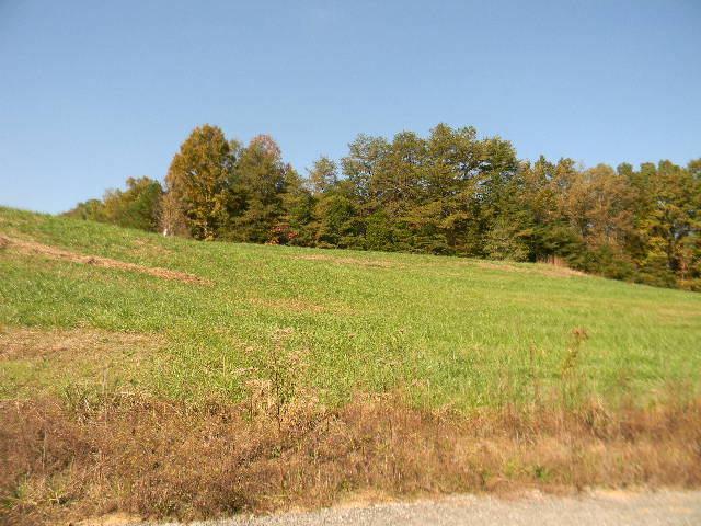 Real Estate for Sale, ListingId: 25774872, Jamestown,TN38556