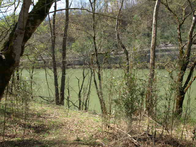 Real Estate for Sale, ListingId: 25977307, Tompkinsville, KY  42167
