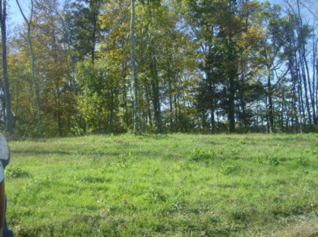 Real Estate for Sale, ListingId: 26415072, Gainesboro,TN38562