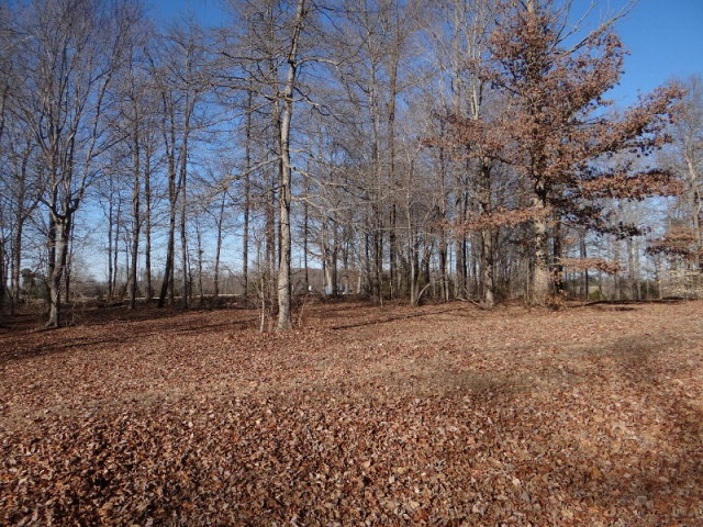 Real Estate for Sale, ListingId: 26832644, Cookeville,TN38506
