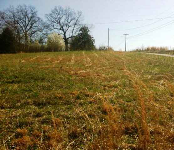 Land for Sale, ListingId:27435492, location: 4099 EZRA DRIVE Cookeville 38506