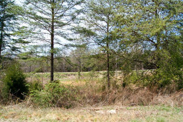Land for Sale, ListingId:27610426, location: Lot 21 Christie Circle Cookeville 38506