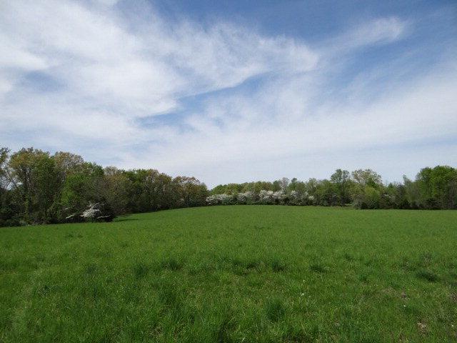 Real Estate for Sale, ListingId: 27890860, Cookeville,TN38501