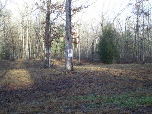 Real Estate for Sale, ListingId: 35736785, Jamestown,TN38556