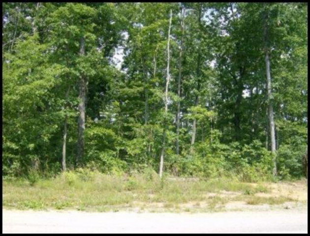 Real Estate for Sale, ListingId: 33542783, Jamestown,TN38556