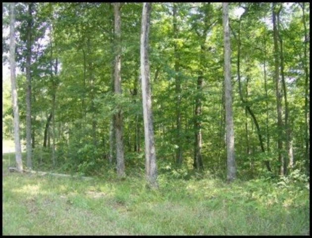 Real Estate for Sale, ListingId: 28000002, Jamestown, TN  38556
