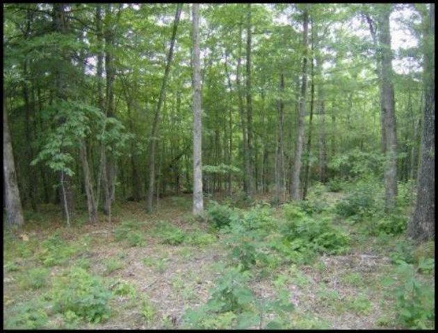 Real Estate for Sale, ListingId: 28019851, Jamestown,TN38556