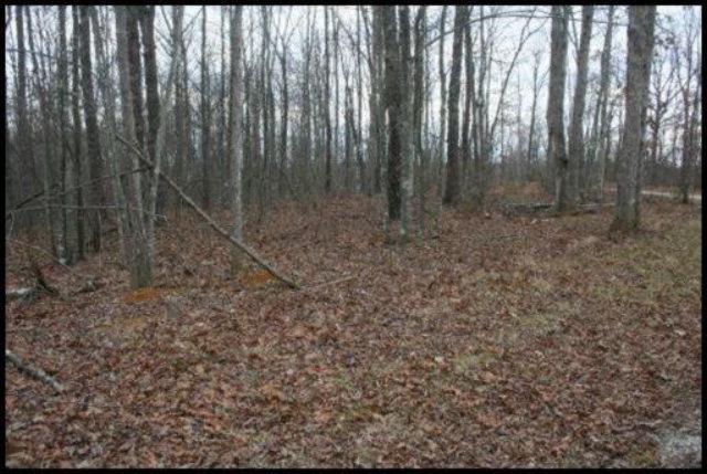 Real Estate for Sale, ListingId: 28019855, Jamestown,TN38556