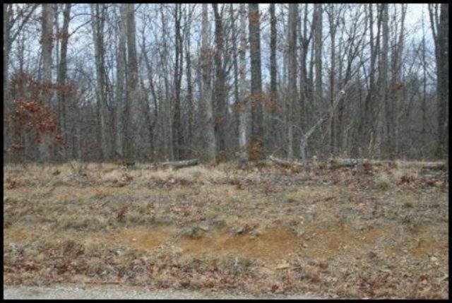 Real Estate for Sale, ListingId: 28019856, Jamestown,TN38556
