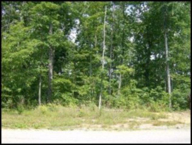 Real Estate for Sale, ListingId: 28059316, Jamestown,TN38556