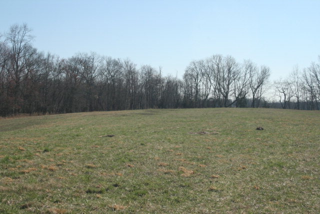Real Estate for Sale, ListingId: 28077307, Gainesboro,TN38562