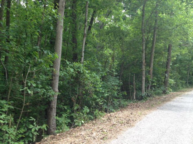 Land for Sale, ListingId:28265558, location: Lot 25 Sherwood Forest Road Livingston 38570