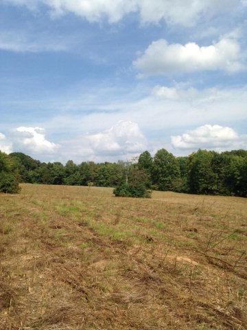 Real Estate for Sale, ListingId: 28353159, Gainesboro,TN38562