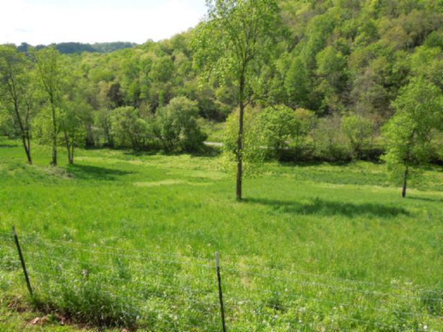 Real Estate for Sale, ListingId: 28696819, Buffalo Valley,TN38548