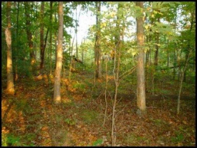Real Estate for Sale, ListingId: 28766004, Jamestown,TN38556
