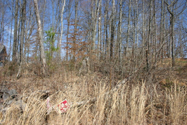 Land for Sale, ListingId:28992749, location: Lot 75 Forrest Cove Cookeville 38501