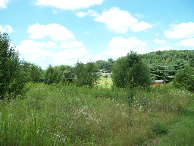 Real Estate for Sale, ListingId: 32381111, Sparta,TN38583