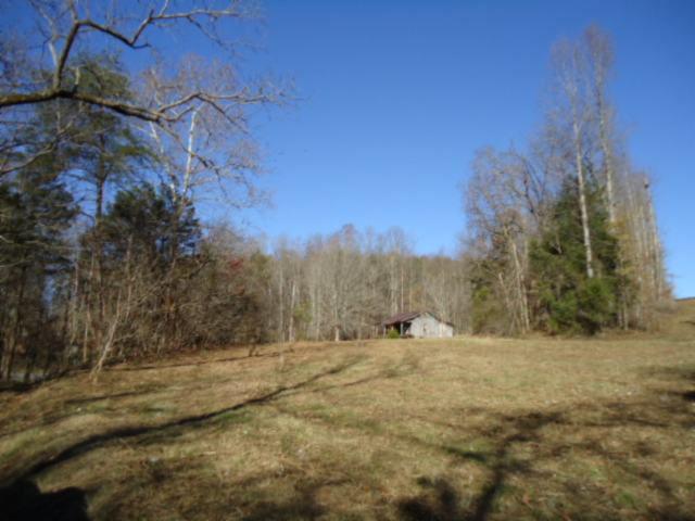 Real Estate for Sale, ListingId: 29097565, Whitleyville,TN38588