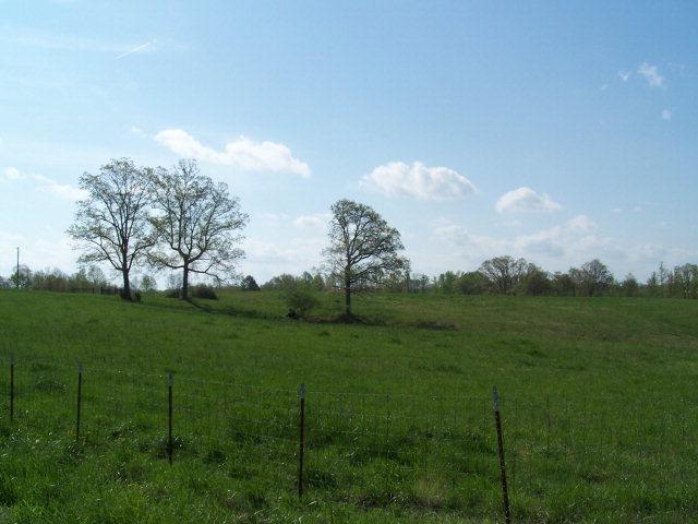 Real Estate for Sale, ListingId: 29309524, Byrdstown,TN38549