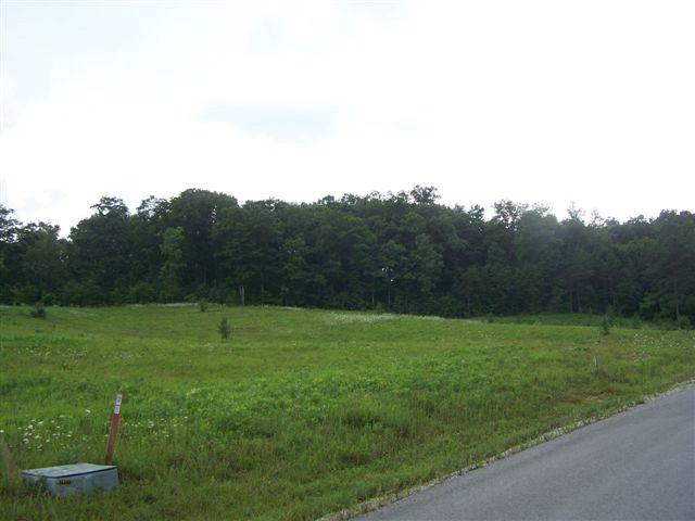 Real Estate for Sale, ListingId: 29557419, Byrdstown,TN38549