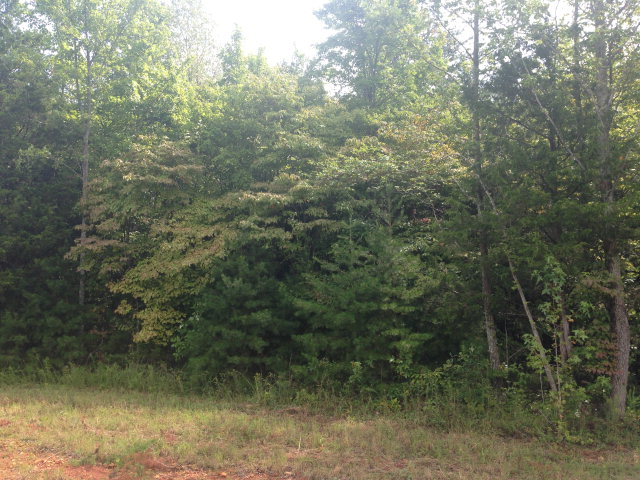Land for Sale, ListingId:29573588, location: 4911 CURTIS DRIVE Cookeville 38506