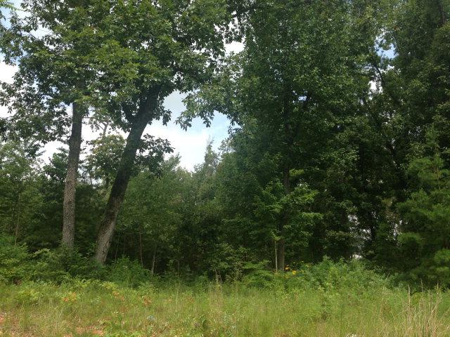 Land for Sale, ListingId:29573589, location: 4966 CURTIS DRIVE Cookeville 38506