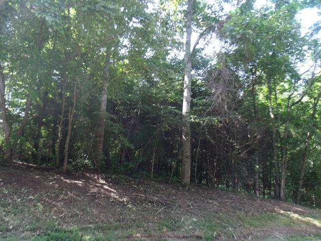 Real Estate for Sale, ListingId: 29573608, Bloomington Springs,TN38545