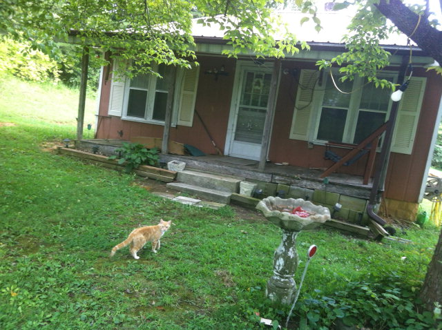 Real Estate for Sale, ListingId: 29649288, Livingston,TN38570