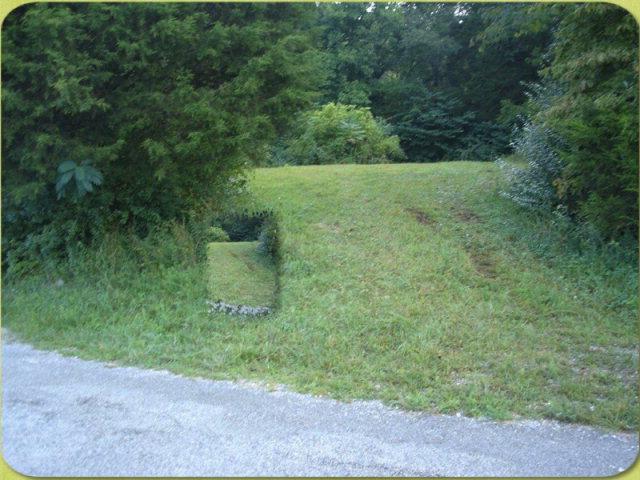Real Estate for Sale, ListingId: 29665063, Livingston,TN38570