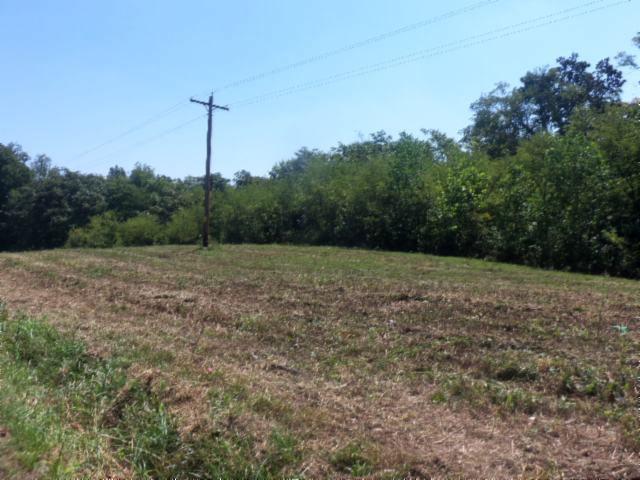 Real Estate for Sale, ListingId: 29759071, Bloomington Springs,TN38545