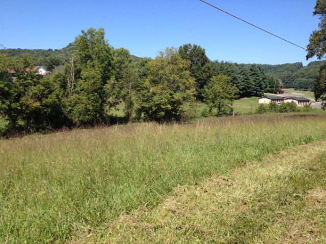 Land for Sale, ListingId:29979660, location: Lot 265 Valley Drive Livingston 38570