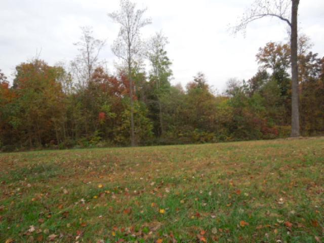 Real Estate for Sale, ListingId: 30481389, Gainesboro,TN38562