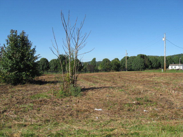 Land for Sale, ListingId:30691146, location: 00 Bailey Stockton Road Livingston 38570