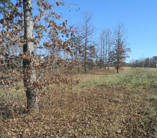 Land for Sale, ListingId:30792811, location: 0 Mae Drive Jamestown 38556