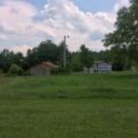 Real Estate for Sale, ListingId: 31099321, Deer Lodge,TN37726