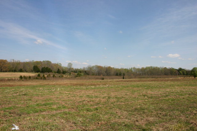 Single Family Home for Sale, ListingId:31632759, location: 6 ACRES LAFEVER CEMETERY Cookeville 38506