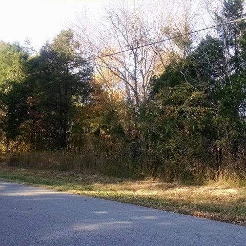 Real Estate for Sale, ListingId: 31918440, Doyle,TN38559