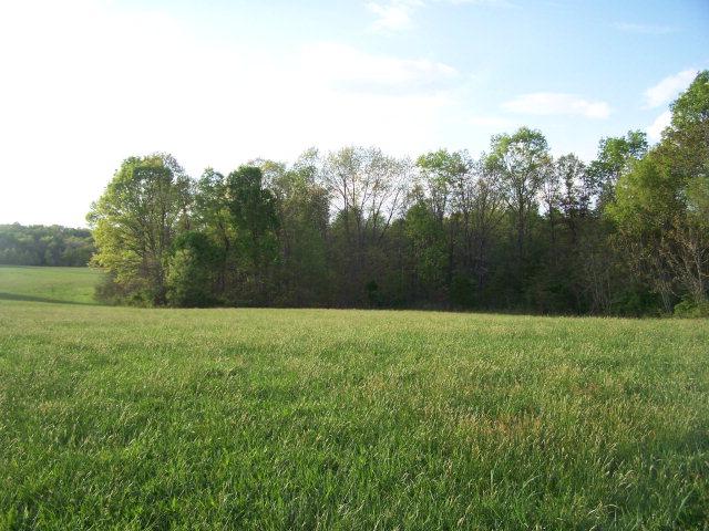 Real Estate for Sale, ListingId: 32417404, Spencer,TN38585