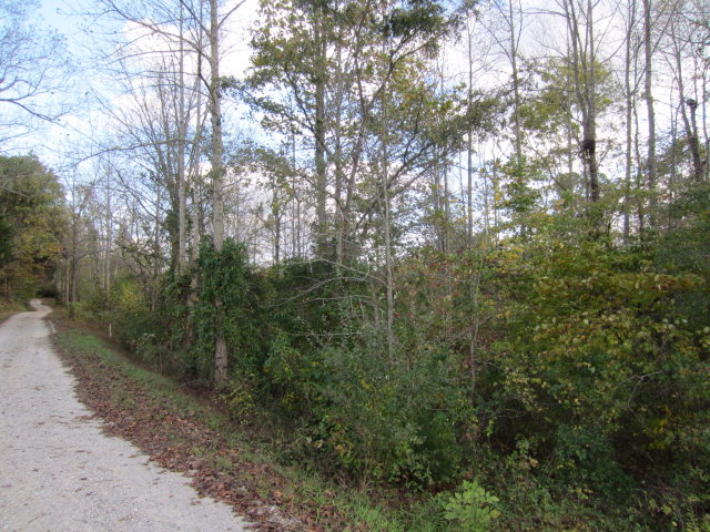 Real Estate for Sale, ListingId: 33586004, Pall Mall, TN  38577