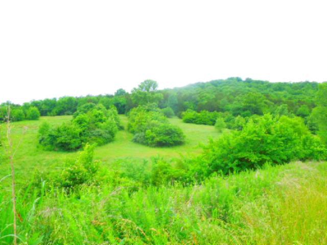Real Estate for Sale, ListingId: 33645112, Gainesboro,TN38562