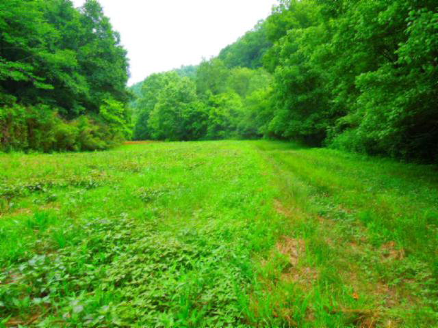 Real Estate for Sale, ListingId: 33986904, Hilham, TN  38568