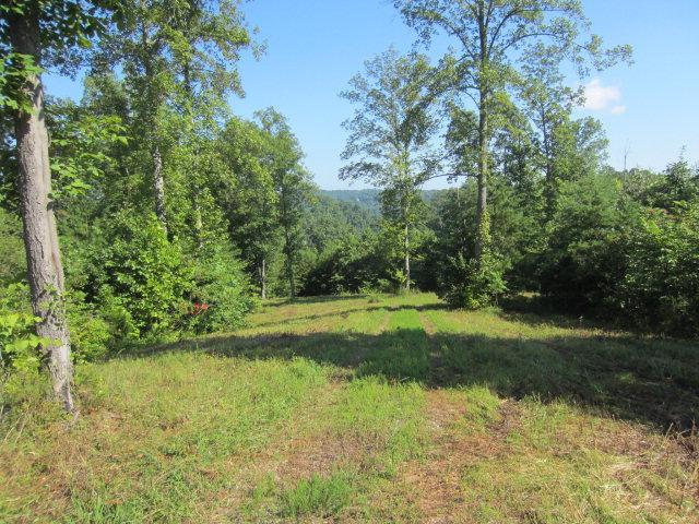 Real Estate for Sale, ListingId: 34902888, Byrdstown,TN38549